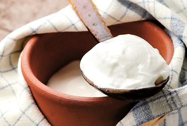 Sữa chua Bulgaria