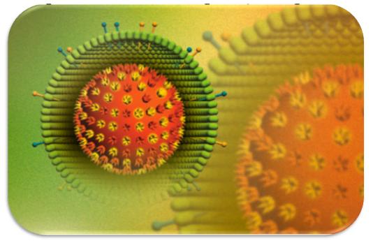 Virus HSV còn được gọi với danh pháp khoa học là Virus Herpes Simplex
