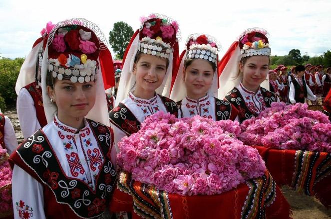 Tại lễ hội sẽ có hơn 300 loại hoa hồng đặc trưng cho hơn 1.000 loại hoa hồng trên thế giới