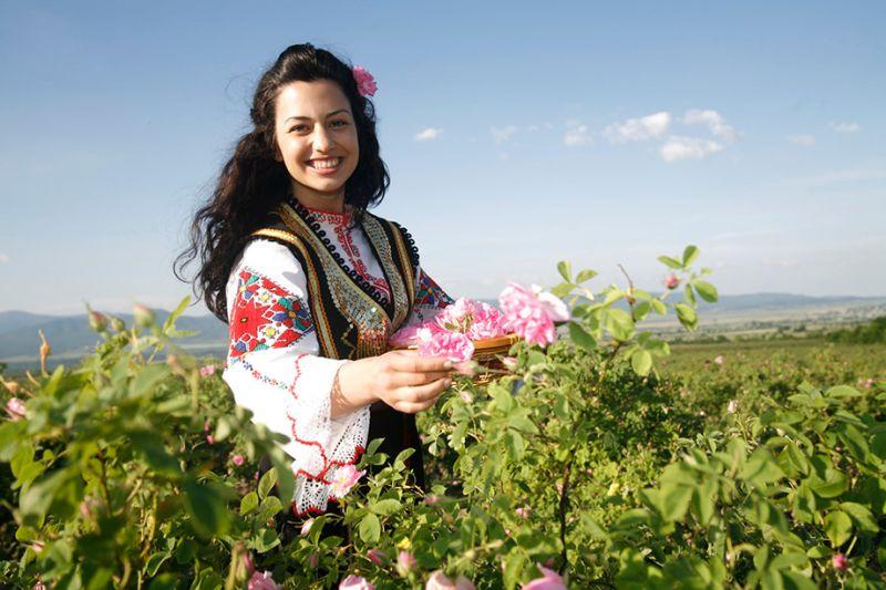 Cô gái Bulgaria xinh đẹp bên đóa hoa hồng nở rộ tại Bulgaria