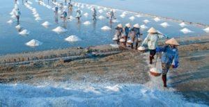 Cánh đồng muối Hòn Khói